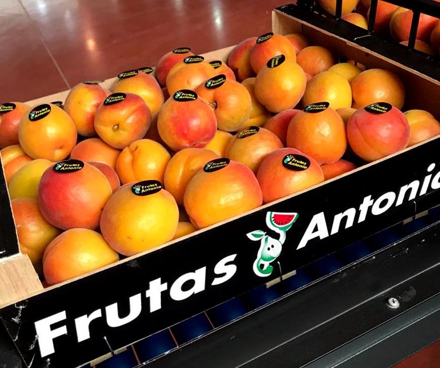 albararicoques-de-grupo-frutas-antonio.jpg