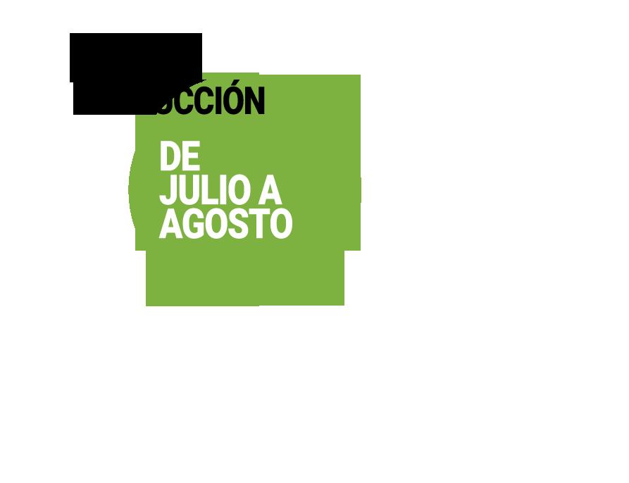 calendario-de-produccion-granada-frutas-antonio.png