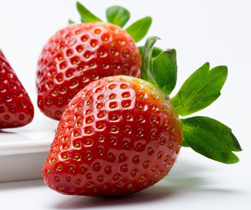 produccion de fresa para la importación y exportacion