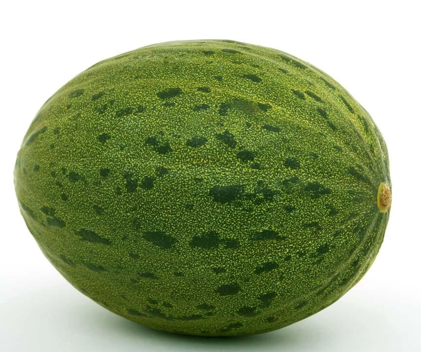 melon sandia andalucia murcia mercabarna barcelona
