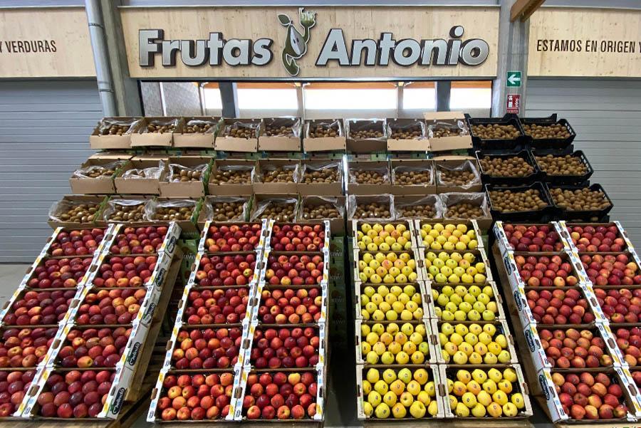 mercabarna-biomarket-frutas-y-verduras-antonio.jpg
