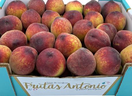 melocotones de agua calibrados de la marca frutas antonio cultivados en murcia