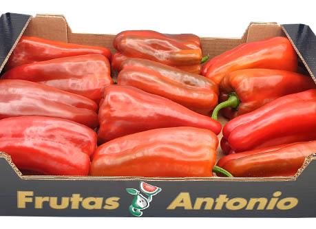 nuestros-pimientos-rojo-extra-grupo-frutas-antonio.jpg