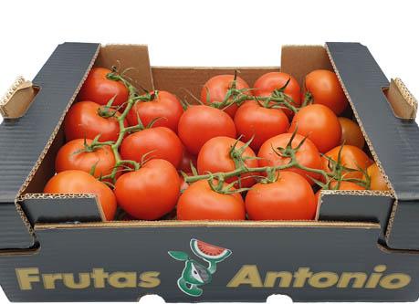 nuestros-tomates-en-rama-frutas-antonio-1.jpg